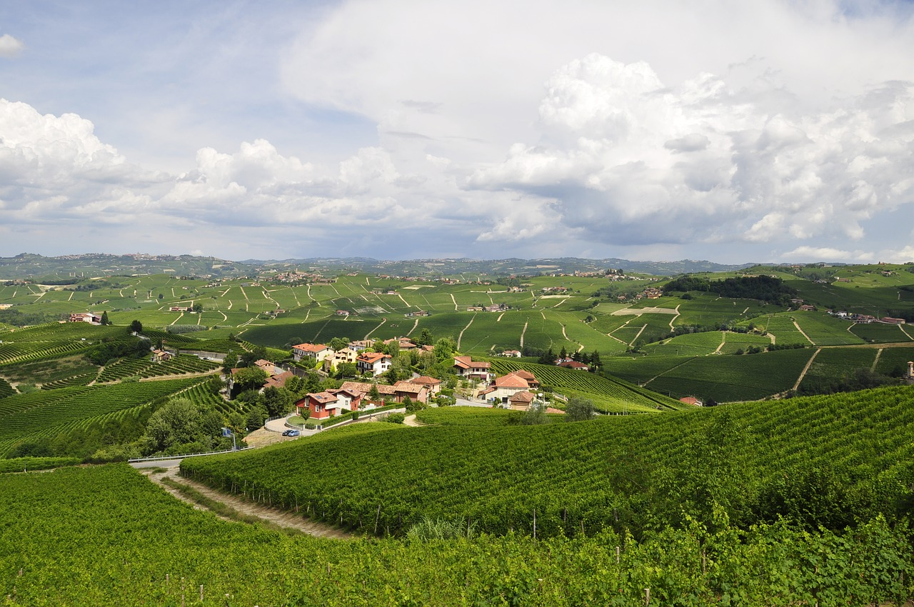 Le Langhe in Autunno